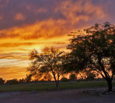 Sunset image for 2 acre horse property in San Tan Valley